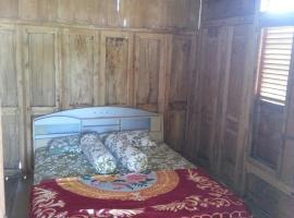 Rumah Kayu Sumberrejo, homestay in Batu