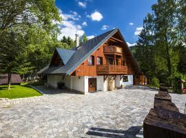 Apartmány Slunce, hotel poblíž významného místa Skokanské můstky Harrachov, Harrachov