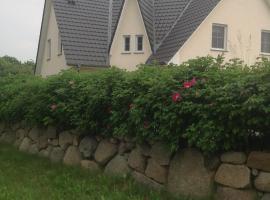 Am Jungfernberg1b, vacation home in Rankwitz