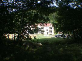 Résidence du Château Lublin, country house in La Bresse