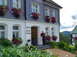 Pension Beste-Schnurbus, hotel near Nordenau Ski Lift, Schmallenberg