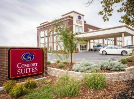 Comfort Suites Woodland - Sacramento Airport, hotel in Woodland