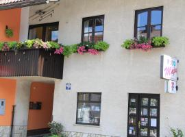 Apartment Apolon planinski, room in Delnice