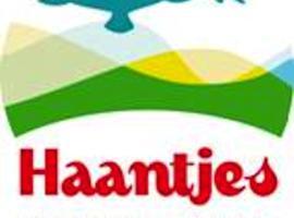 Haantjes Vakantiepark, hotel near wrakkenmuseum, Formerum