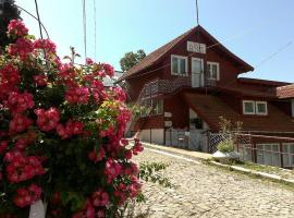 Pensiunea Floare de Colt, gazdă/cameră de închiriat din Sinaia