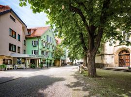 Hotel-Restaurant Schwanen, hotel in Metzingen