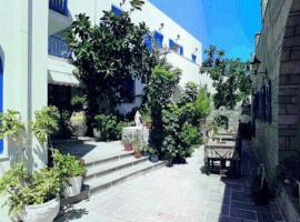 Minoa Hotel, hotel in Naousa