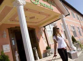 Hotel Grande, hotel v mestu Celje