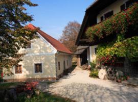 Farm Soržev mlin, hotel blizu znamenitosti Terme Dobrna, Nova Cerkev