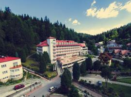 Geovita Krynica-Zdroj, hotel in Krynica Zdrój