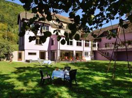 Logis Hotel Des Vosges, hotel in Sewen
