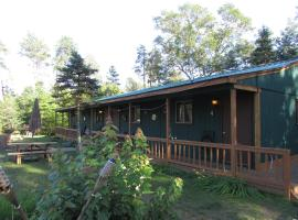 Best Bear Lodge, apartment in Irons