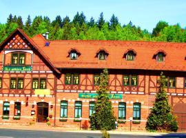 Hotel Zum Goldenen Hirsch, Hotel in Hirschbach