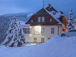 Hotel Domovina, отель в городе Шпиндлерув-Млин