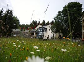 Gastinger Hotel-Restaurant, Hotel in der Nähe von: Rennsteiggarten Oberhof, Schmiedefeld am Rennsteig
