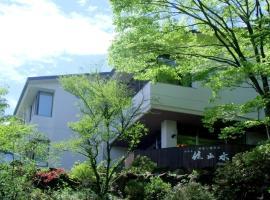 HAKONE GORA ONSEN Hotel Kasansui, hotel in Hakone