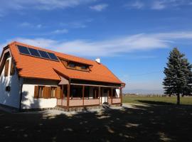 Ezüstfenyő Agroturisztikai Panzió, pensiune din Borzont