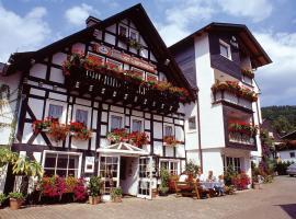 Pension Zueschener Bauernstuben, budget hotel in Winterberg