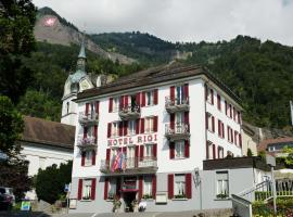 Hotel Rigi Vitznau, hotel in Vitznau