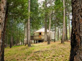 Yosemite Lakes Hillside Yurt 10, glamping site in Harden Flat