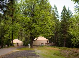 Yosemite Lakes Hillside Yurt 11, glamping site in Harden Flat