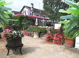La Roseraie Biebler, hôtel à Jungholtz