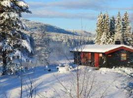 Trysil Hyttegrend, lodge in Trysil