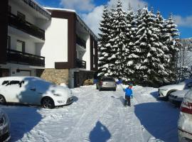 Penzion U Sochoru, guest house in Pec pod Sněžkou