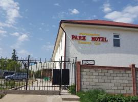 Park Hotel&Hostel, отель в Караколе