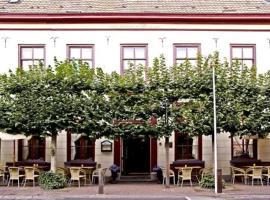 Hotel de Lantscroon, hotel in s-Heerenberg
