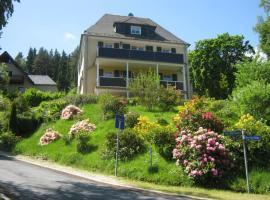 Villa Goldbrunnen Ferienwohnung 3, apartment in Bad Elster