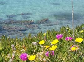 Rachel Hotel, hotel in Agia Marina Aegina