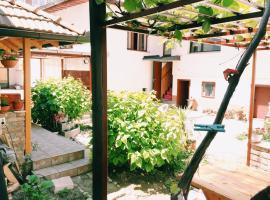 Guest house Nizama's Place, smještaj s doručkom u Sarajevu