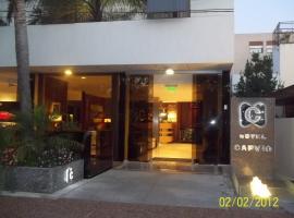 Hotel Capvio, hotel in Villa Carlos Paz