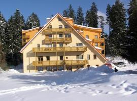 Family Apartments Spiežovec, apartmán na Donovaloch