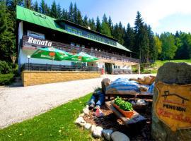 Pension Renata, hotel in Harrachov