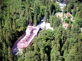 Hotel EUROPA - Górnicza Strzecha, hotel near Dinopark, Szklarska Poręba