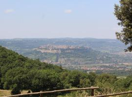 Agriturismo Fattoria Poggio Boalaio, agriturismo a Orvieto