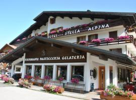 Hotel Stella Alpina, hotel in Falcade