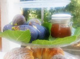 B&B Blanda, bed & breakfast a Maratea