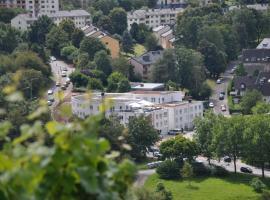 Schroeders Wein-Style-Hotel, отель в Трире