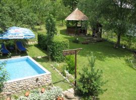 Casa Rustica Oltenia, room in Băile Govora