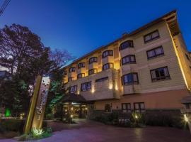Hotel Serra Nevada, hotel near Castelinho, Canela