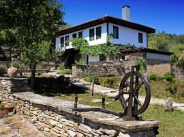 Къща за гости Каменни пътеки, хотел в Костенковци