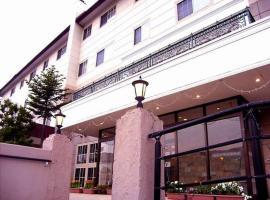白樺湖ホテルパイプのけむり、茅野市のホテル