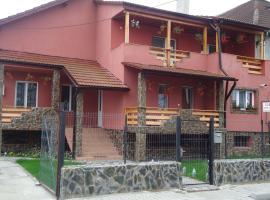 Casa Cu Piatra, hotel in Haţeg