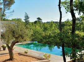 Sous Les oliviers - SPA jacuzzi - charming B&B, hotel in Saint-Maximin-la-Sainte-Baume