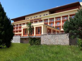 Wellness Resort Energetic – hotel w mieście Rožnov pod Radhoštěm