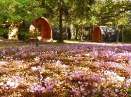 Cabanes des châteaux, campground in Chouzy-sur-Cisse