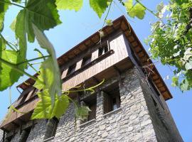 Anogi Hotel, hotel in Metsovo